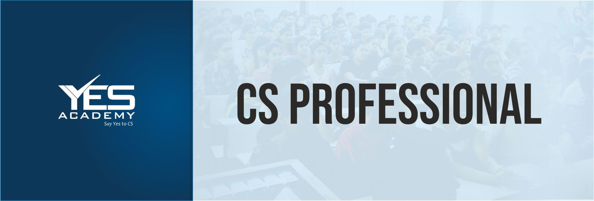 Picture for category CS Professional